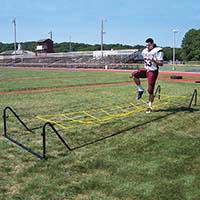 High Stepper Agility Trainer